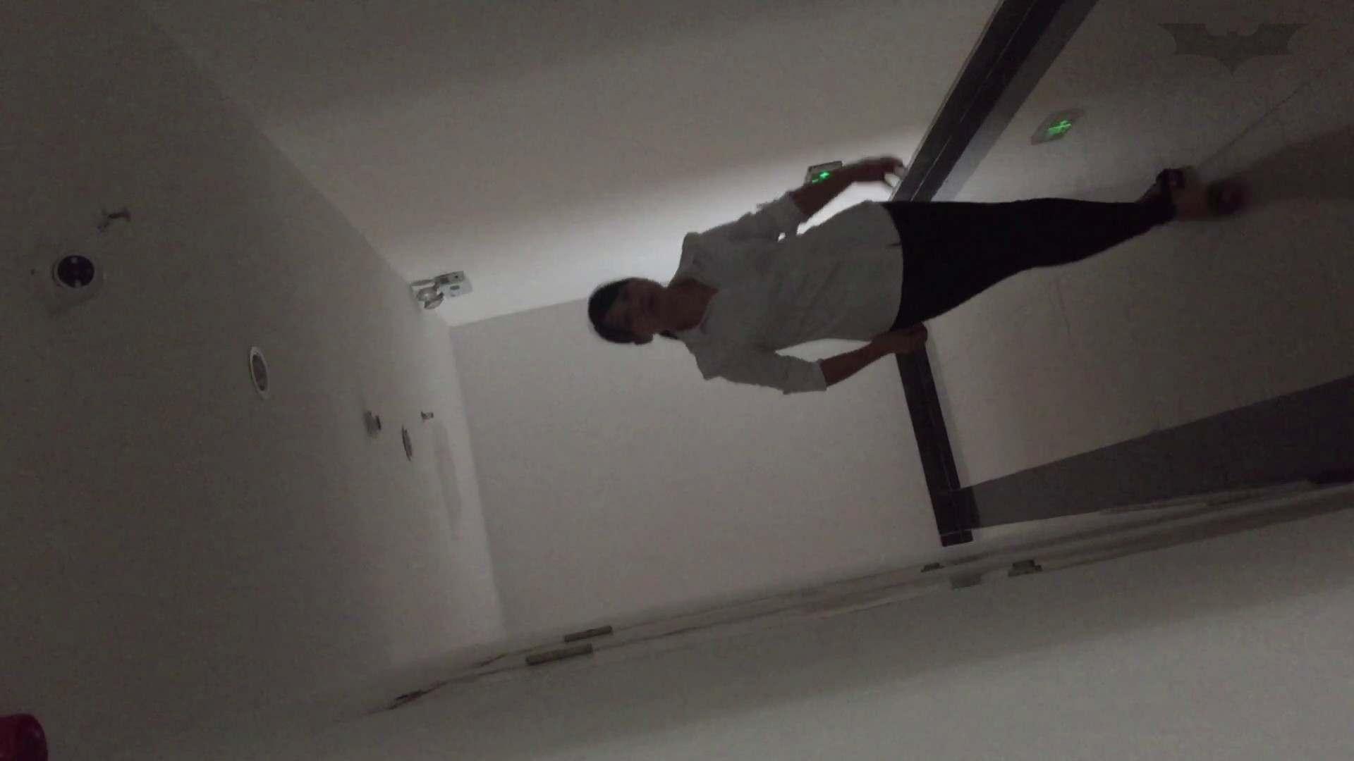 JD盗撮 美女の洗面所の秘密 Vol.73 盗撮 性交動画流出 75枚 28