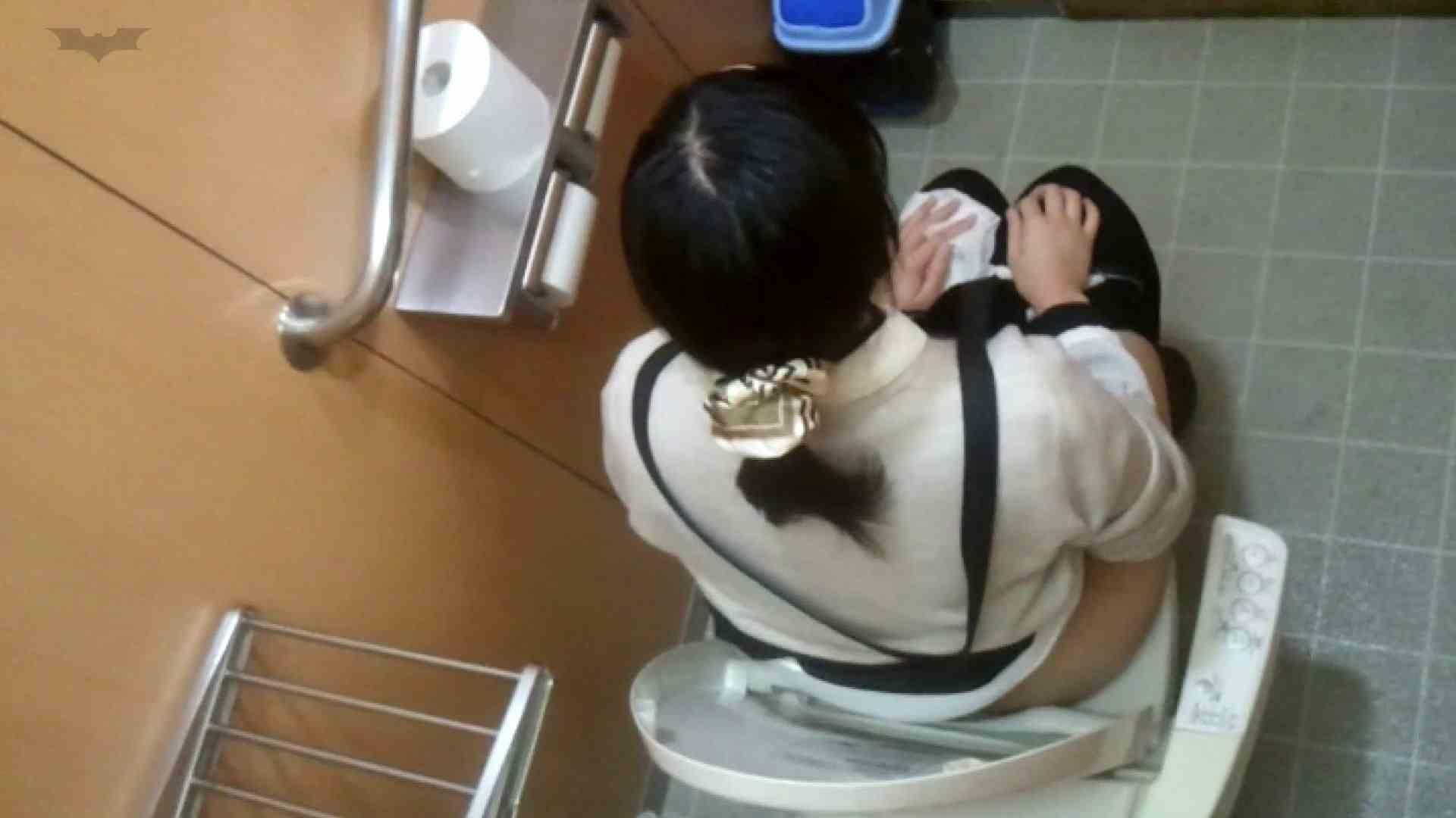 化粧室絵巻 商い場編 VOL.25 エッチなOL   0  110枚 73