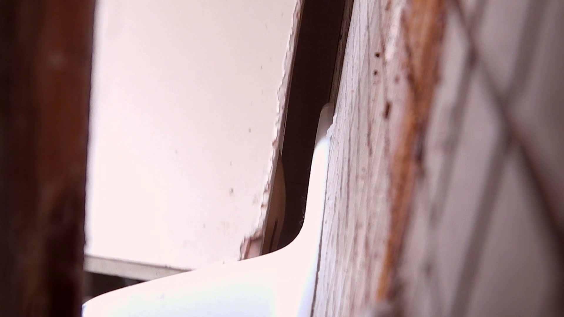 高画質至近映像和式の隙間 Vol.01 和式 オマンコ動画キャプチャ 104枚 50