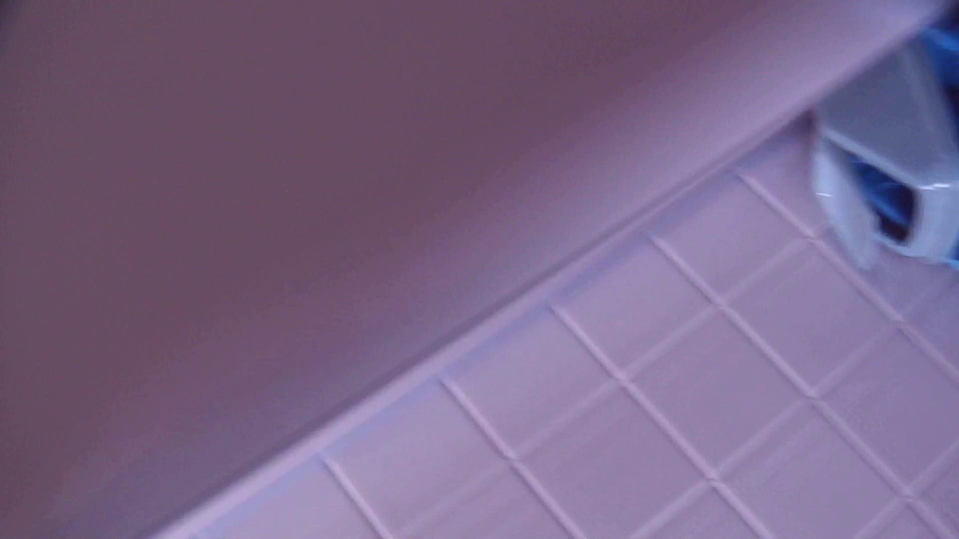 お銀さんの「洗面所突入レポート!!」Nol.18 エッチなOL | タレント並みの美人  92枚 34