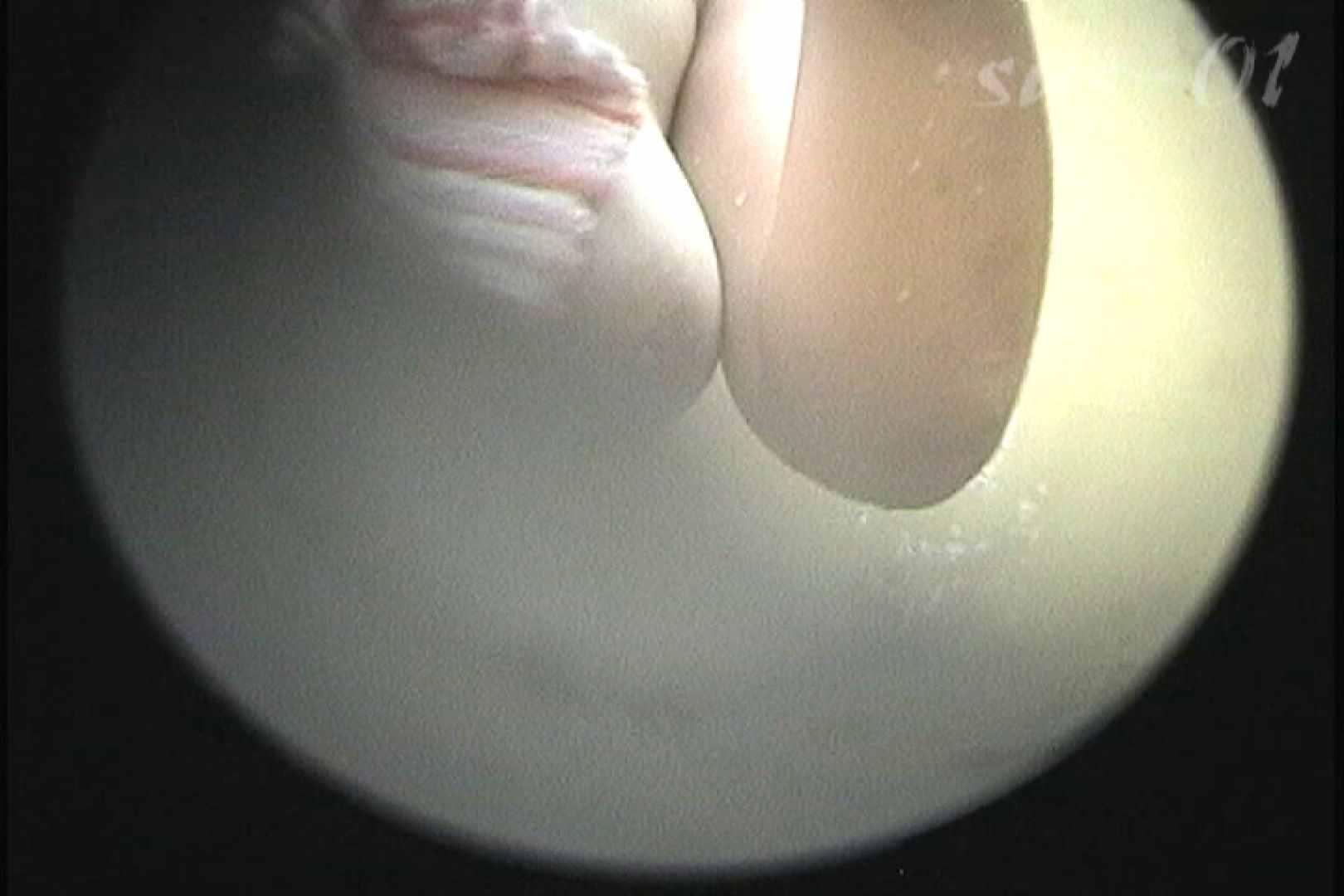 No.2 タレパイちゃんと美乳チャン。乳首の接写が中心。 エッチな乙女  80枚 40